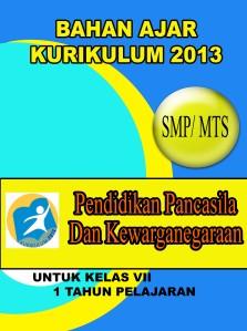 cover kur 2013 PKN